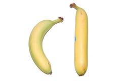 Crazy Bananas. A normal banana and a straight banana, just doesn't look right Stock Photos