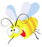 Crazy bee Royalty Free Stock Photography