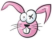 Crazy Bunny Stock Photos