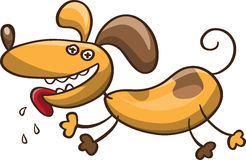 Crazy cartoon dog Stock Image