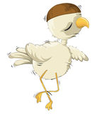 Crazy chicken Stock Photo