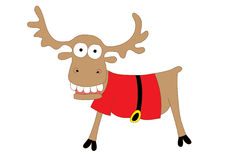 Crazy christmas raindeer Royalty Free Stock Photos