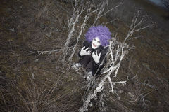 Crazy clown Stock Images