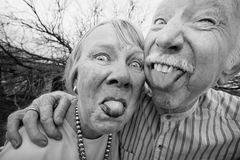 Crazy Couple Sticking Out Tongues. Closeup portrait of crazy elderly couple outdoors sticking out tongues Stock Image