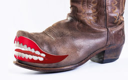 Crazy  Cowboy Boots. Stock Photo