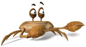 Crazy crab brown sugar Stock Photos