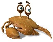 Crazy crab brown sugar ooops Stock Images