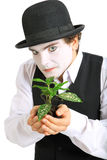 Crazy gardener mime. Stock Images