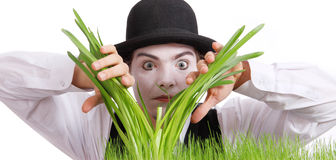 Crazy  gardener mime. Studio shot Royalty Free Stock Photography
