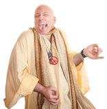 Crazy Guru Stock Images