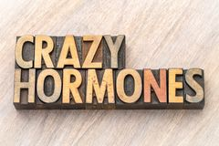 Crazy hormones word abstract in wood type. Crazy hormones - word abstract in vintage letterpress wood type stained by color inks royalty free stock photography