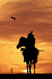 Crazy horse at sunset Royalty Free Stock Photo