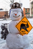 Crazy Koala Snowman Royalty Free Stock Image
