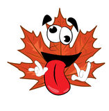 Crazy mapple leaf cartoon Stock Image