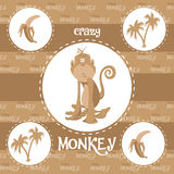 Crazy monkey pattern Royalty Free Stock Images
