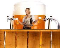 Crazy oktoberfest style with sexy tiroler girl serving beer Royalty Free Stock Image