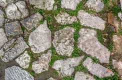 Paving detail Royalty Free Stock Photo