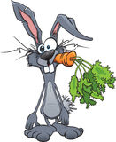 Crazy Rabbit stock images
