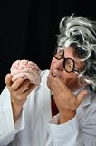 Crazy Scientist. Crazy Genius long hair scientist with brain stock image