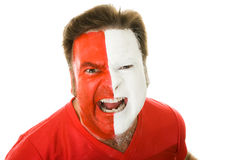 Crazy Snarling Sports Fan. Aggressive, snarling sports fan isolated on white background Stock Image