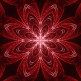 Crazy symmetric abstract background. Crazy symmetric abstract flourish element with dark background Royalty Free Stock Photos