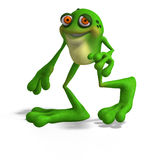 Crazy Toad Royalty Free Stock Photography