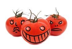 Crazy tomatos. On white background Stock Image