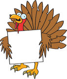 Crazy Turkey With A Sign Royalty Free Stock Photos