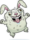 Crazy Ugly Bunny Royalty Free Stock Photos