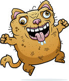 Crazy Ugly Cat. A cartoon illustration of an ugly cat looking crazy Royalty Free Stock Photography