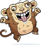 Crazy Ugly Monkey Royalty Free Stock Photo