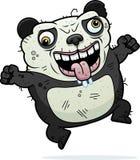 Crazy Ugly Panda Royalty Free Stock Photos