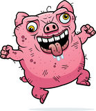 Crazy Ugly Pig. A cartoon illustration of an ugly pig looking crazy Stock Photo