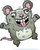 Crazy Ugly Rat Royalty Free Stock Photos