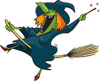 Crazy witch 1 Stock Image