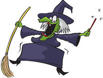 Crazy witch 2 Royalty Free Stock Images