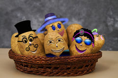 Crazy Zany Potato Family. Fun filled photo with graphics added forhumor of a potato family including, dad, mom, two teenagers and baby all in a basket Royalty Free Stock Photo