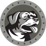 Círculo de Dog Head Metallic del guardia de Rottweiler retro Imagenes de archivo