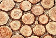 Círculos de madera con los anillos anuales Imagen de archivo libre de regalías