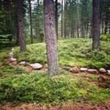 Círculos de pedra Fotos de Stock Royalty Free