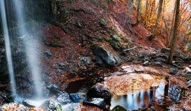 Creaciones del otoño Fotografía de archivo