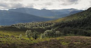 Creag Meagaidh National Nature Reserve Royalty Free Stock Images
