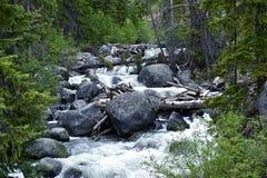 Creak del fiume Fotografie Stock