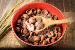 Creal choco i bunkecloseup Arkivfoto