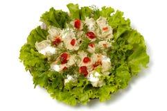 cream зеленые цвета тарелки изолировали ravioli ketchup кислый Стоковая Фотография RF