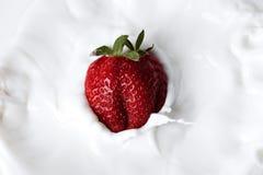 cream клубника Стоковые Изображения RF