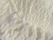 cream льдед Стоковое фото RF