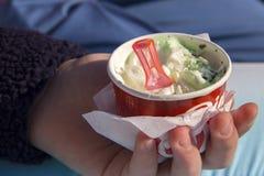 cream мята льда Стоковые Фото
