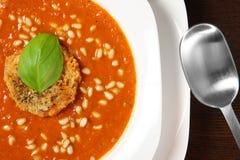 cream овощ супа Стоковая Фотография RF