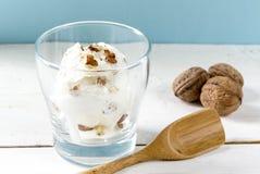 cream домодельная ваниль льда Стоковое Изображение RF